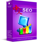 Chinese SEO Services